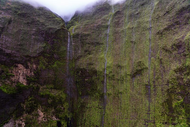 Hawaii 2019-20.jpg
