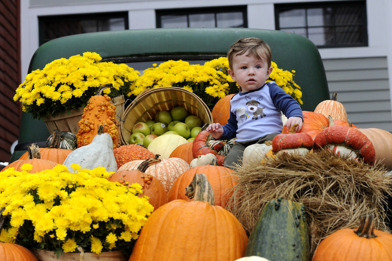 Our little Jack-o-lantern surrounded by pumpkins