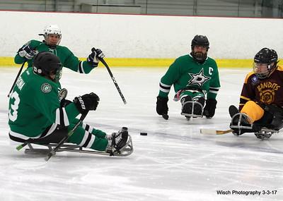 Hendrickson Foundation  Sled Hockey