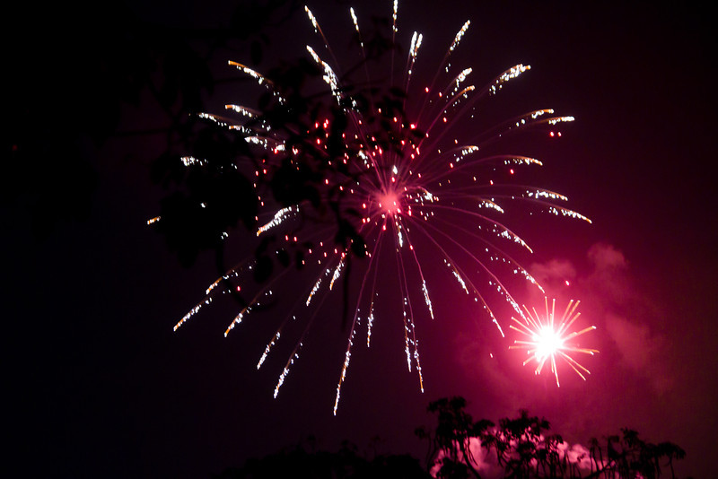 Disneyand's Summer Fireworks Show: Magical