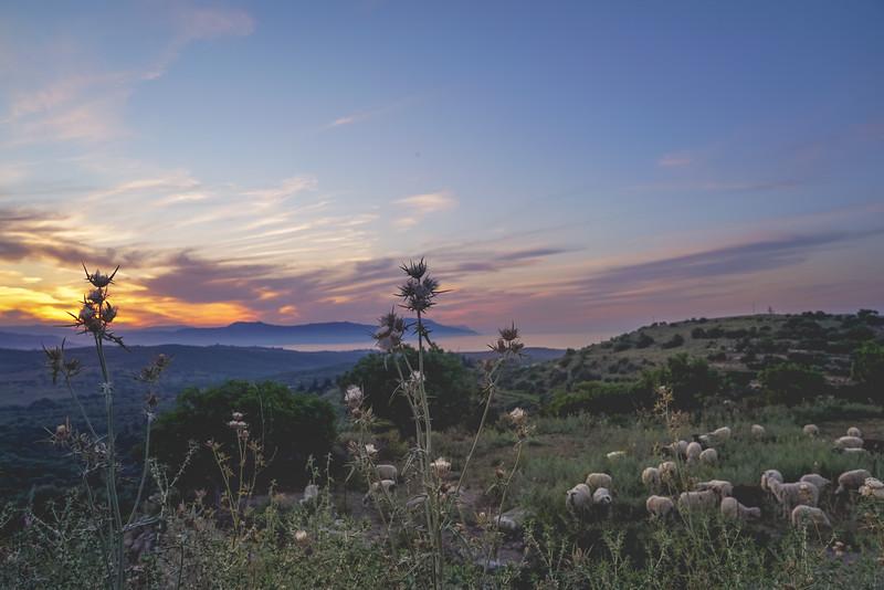 Crete 06.17-125.jpg