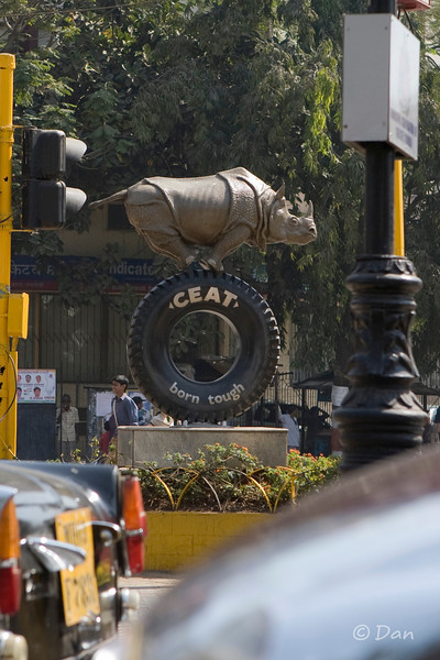 rhino on the street