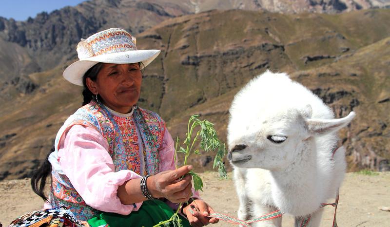 Peru_0124.jpg