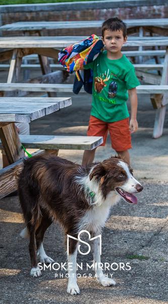 Dog Splash 2017