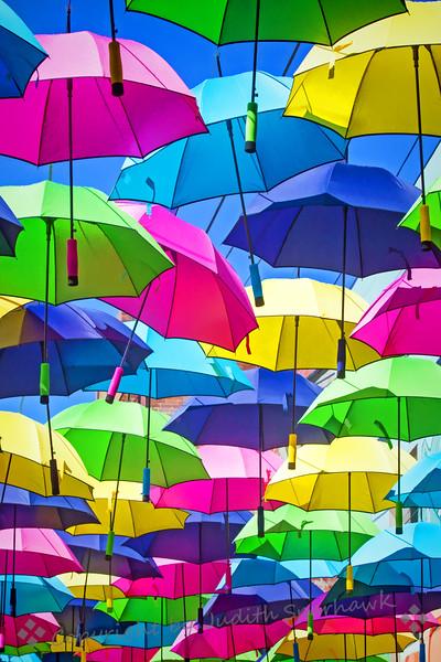 Umbrellas in the Alley