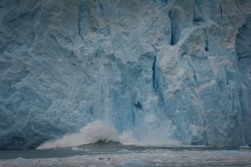 Kenai-Fjords-91.jpg