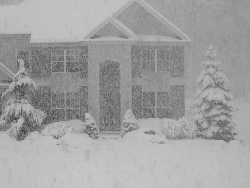 snow storm 4.jpg