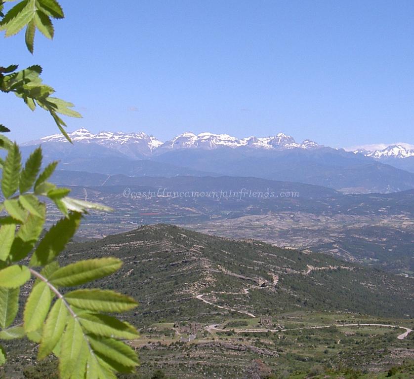 Spanish Pyrenees from Punto de Monrepos