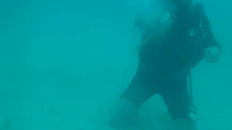 Punta Cana December 2012 166.MP4