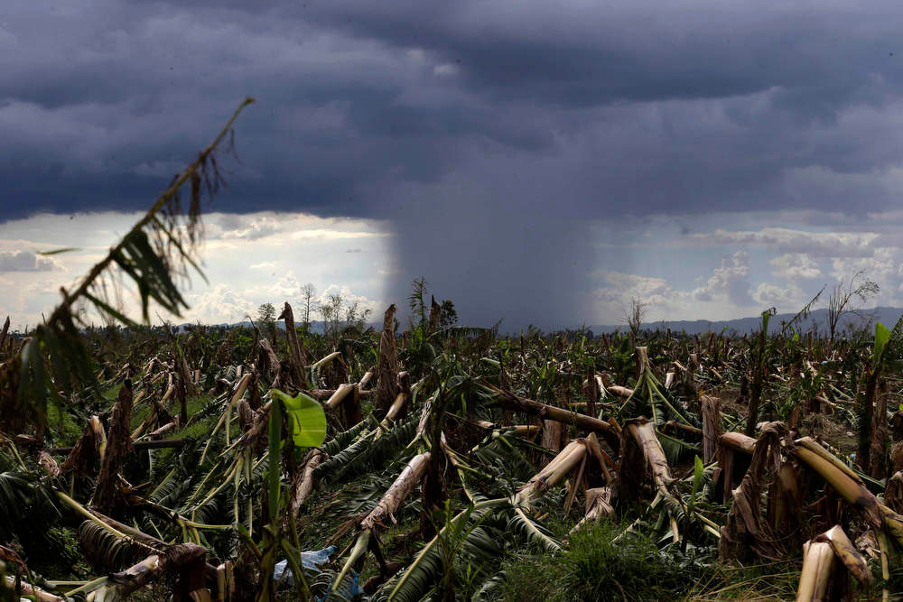 Description of . A rare cloud formation is seen amidst destroyed banana plantation four days after typhoon Bopha left hundreds of people killed and rendered extensive damage to agriculture at Montevista township, Compostela Valley in southern Philippines Saturday Dec. 8, 2012. Search and rescue operations following typhoon that killed nearly 600 people in the southern Philippines have been hampered in part because many residents of this ravaged farming community are too stunned to assist recovery efforts, an official said Saturday. (AP Photo/Bullit Marquez)