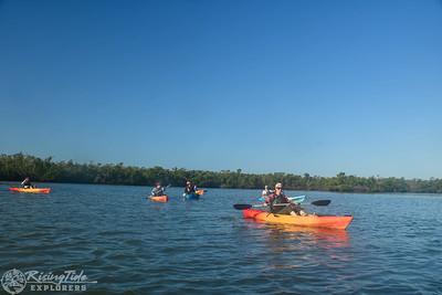9AM Mangrove Tunnel Kayak Tour - Rickabaugh, Joliat & Russo