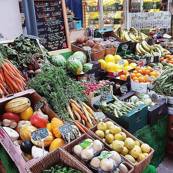 conscious-FreshGreenSmoothies_com-Vegan-Intelligent-Compassionate-raworganicvegan-plantbased-greensmoothies-OrganicGardeningArt-Art-Aeroponics7101111.jpg
