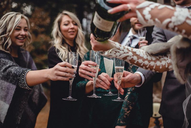 Requiem Images - Luxury Boho Winter Mountain Intimate Wedding - Seven Springs - Laurel Highlands - Blake Holly -1246.jpg