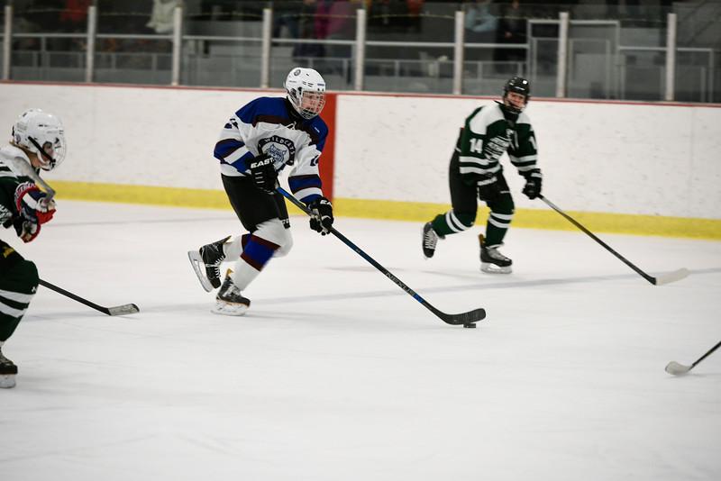 Wildcats JV Hockey 0367.jpg