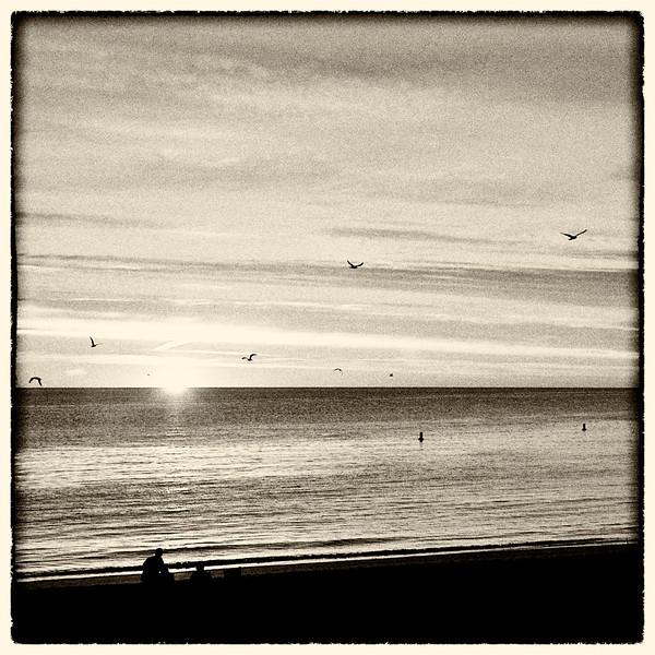 Dawn6.jpg