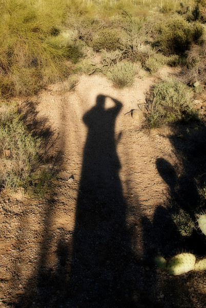 A short amble in the brush between Gates Pass and the Arizona-Sonora Desert Mseum.