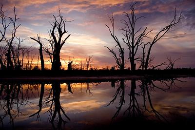 River Murray - Australia