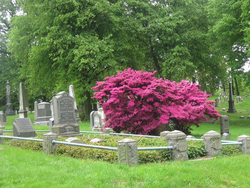 09.05.17 Greeen-wood Cemeteryf-93.jpg