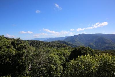 Lyrebird Sanctuary Images