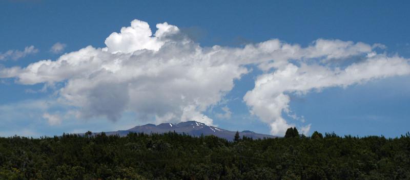 211- 20080412- Hawaii 15- Volcano Nat'l Park DSC_2910.jpg