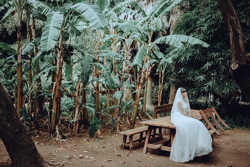 Tu-Nguyen-Destination-Wedding-Photography-Videography-Hochzeitsfotograaf-Ronda-Andalucia-Spain-Granada-Sierra-Nevada-Malaga-84.jpg