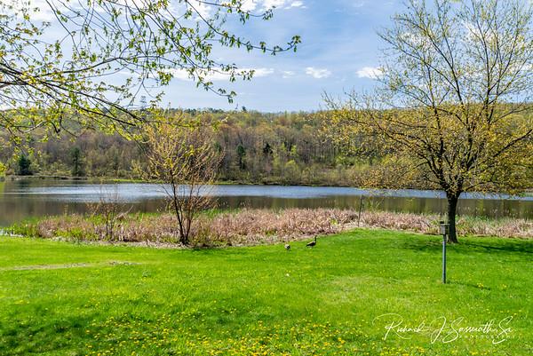 Lake Naomi, 5-11-18