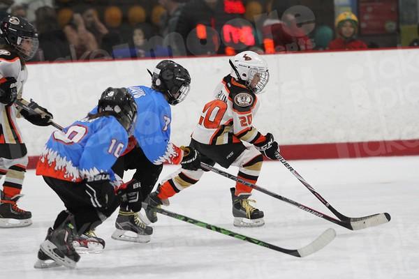 Ice Monsters vs Anaheim Lady Ducks