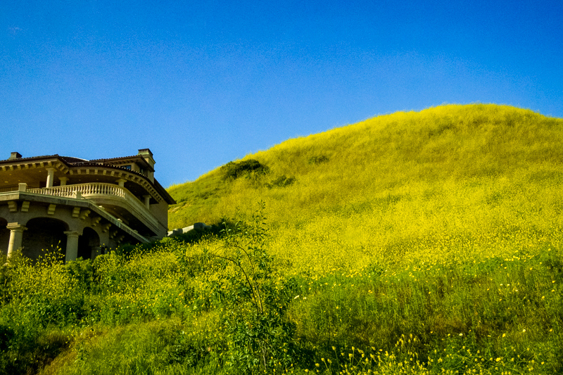 March 30 - Malibu in the afternoon.jpg