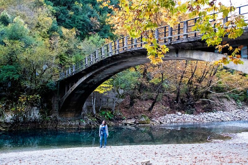 גשר וידאומטיס.jpg