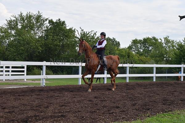 30A. Academy Equitation WTC 17 & Under