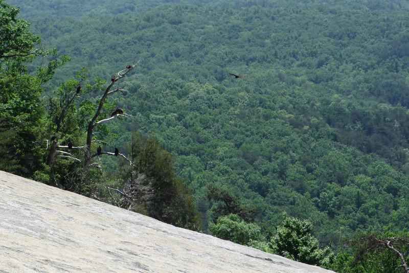 Stone Mountain Summit - 2,305'