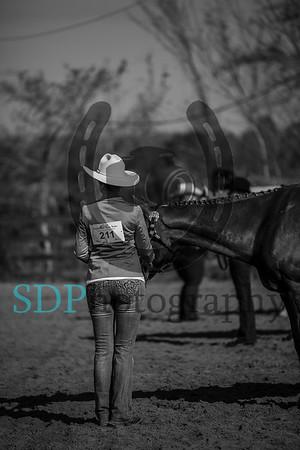 Salt Water Horse Show 1/20/18
