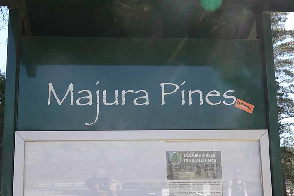 25 Aug 2019 Bolt Majura Pines Fun Run