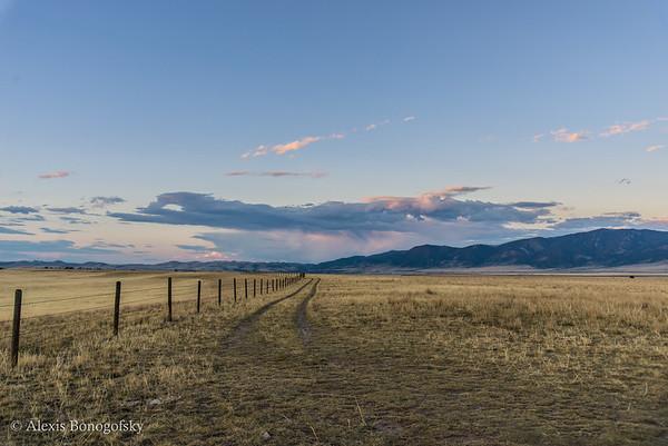 Longhorn Ranch