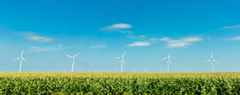 Corn fields, sunflower fields, and windmill fields all the way to the Oklahoma border.