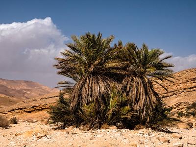 Eilat mountains January 2019
