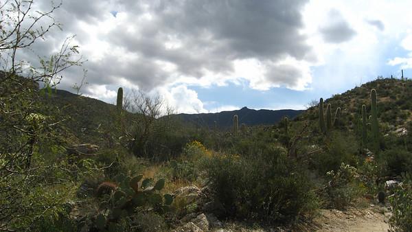 Tucson (2009)