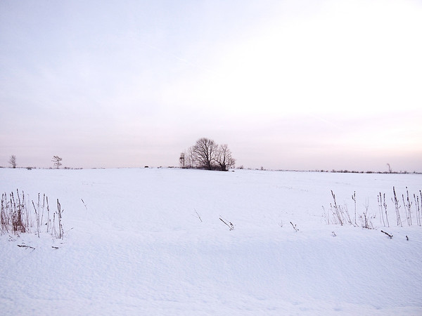 Winter Nature Landscapes
