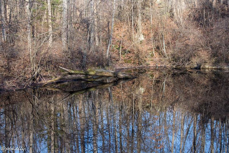 quarry scene 120715-2.jpg