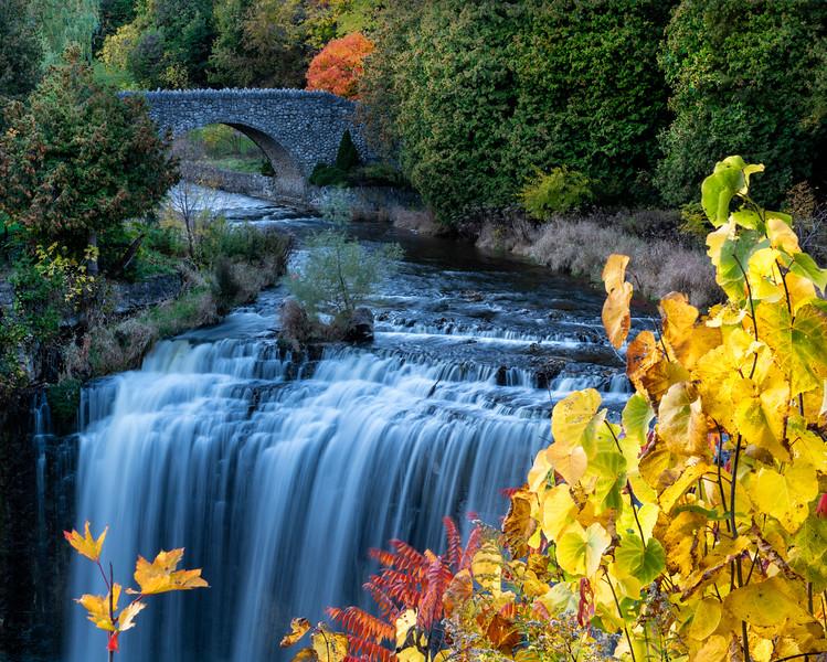 Webster Falls.jpg