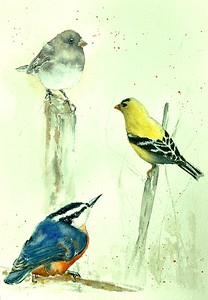"""""""Bird Conference"""" (watercolor) by Kate Greenway"""