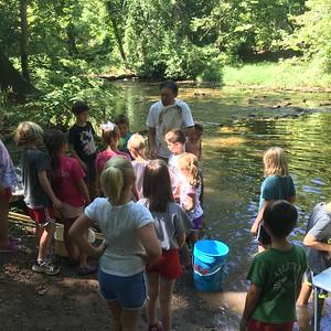 Wissahickon Creek Adventure