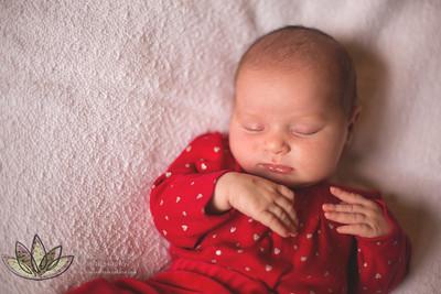 Maya - Newborn
