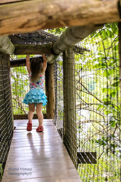 2016-07-17 Fort Wayne Zoo 604LR.jpg
