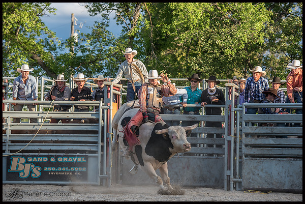 Bull Riding in the Rockies 2015