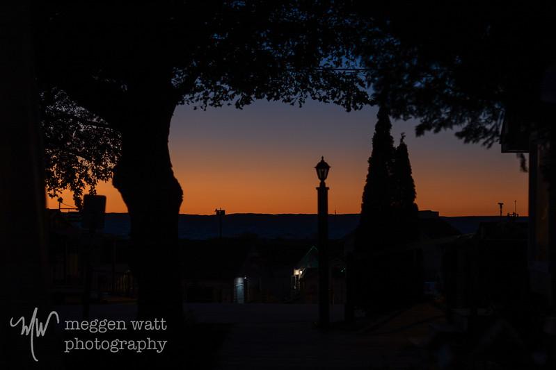 late night leland-1491.jpg