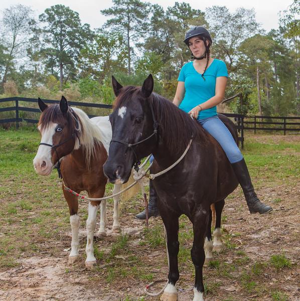 horses & staff-349.jpg