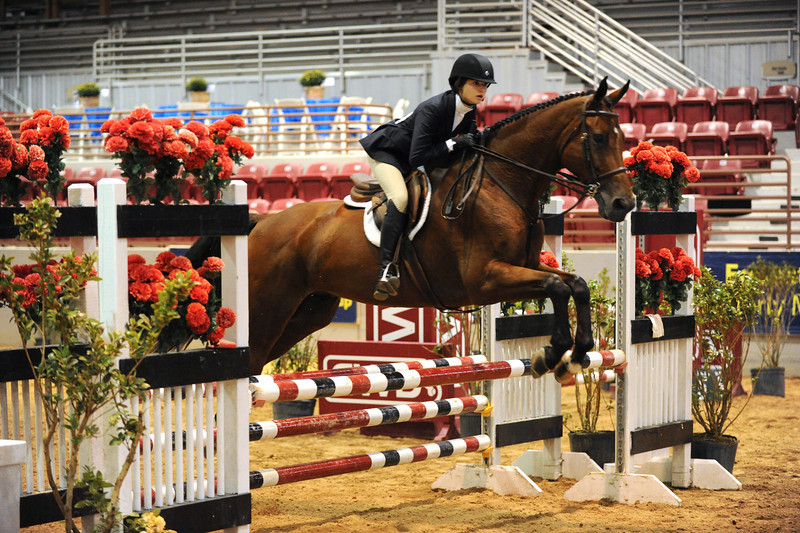 Horse show (87).jpg