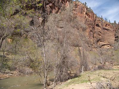 2007 - Zion National Park