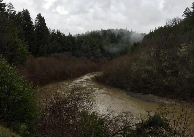 Navarro river.jpg